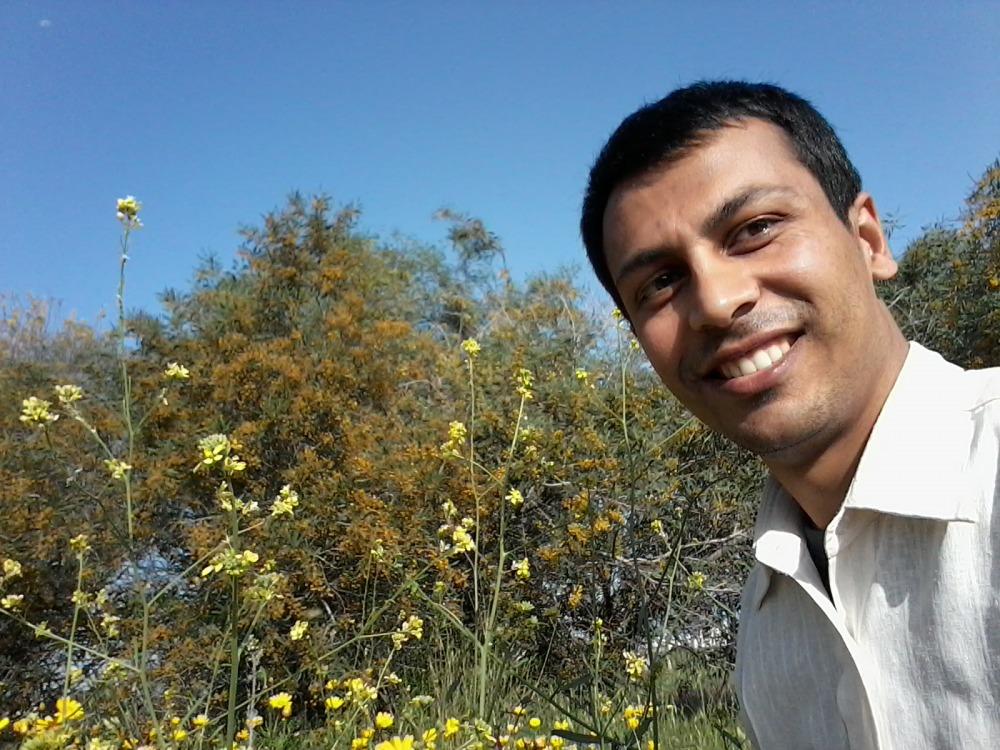Anil Pokherl