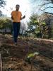 garden-planting-06.jpg